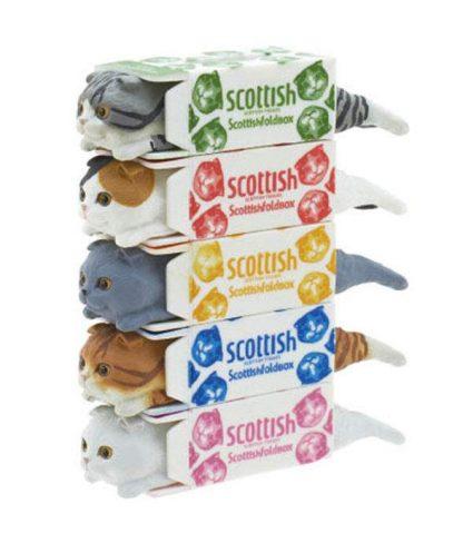 Kitan Club - Scottish Tissue Cat